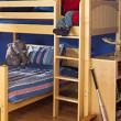 boy on top bunk maxtrix bed