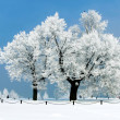 It's Time To Winterize Your Home, Part 3