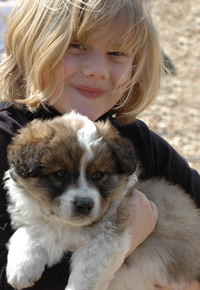young child with pet dog