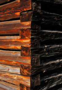 Old barn timbers may produce valuable wood