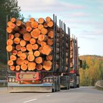 How Seasonal Demand Affects Lumber Pricing