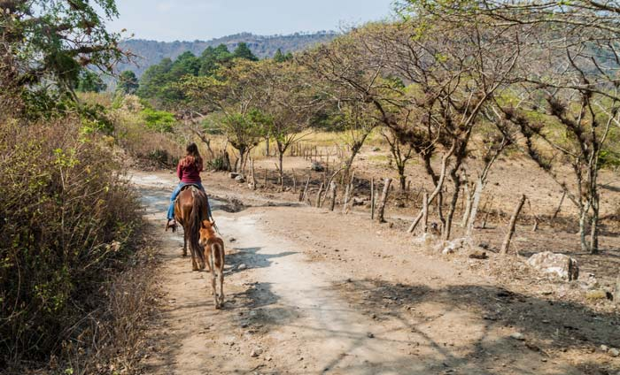 riding horseback in central america